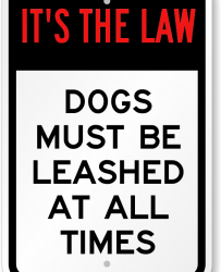Dog Leash Laws in Dog Bite Lawsuits